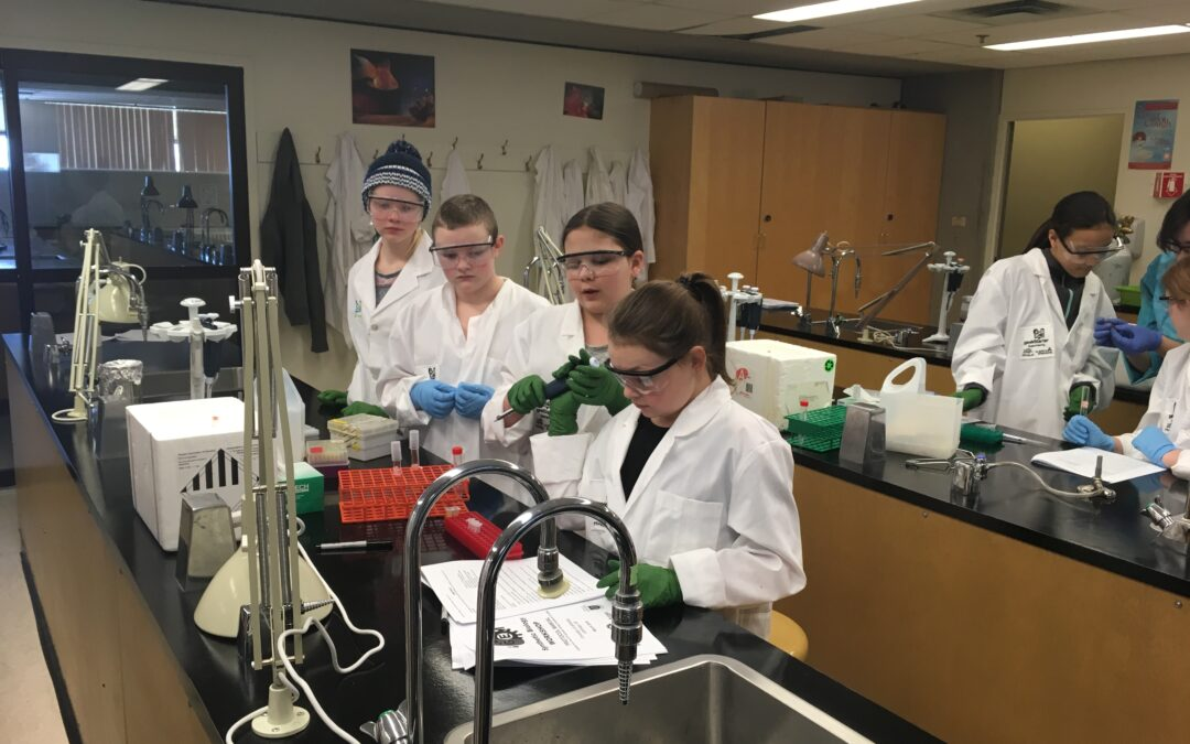 Student teams build synthetic biology skills at geekStarter 2019 Wet Lab Skills workshop